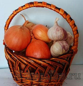 Как хранить чеснок и лук