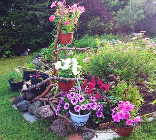 Клумбы и цветники своими руками на даче