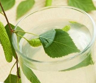 Польза березового сока