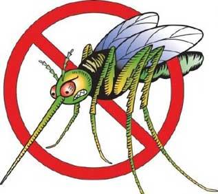 защита от комаров в домашних условиях