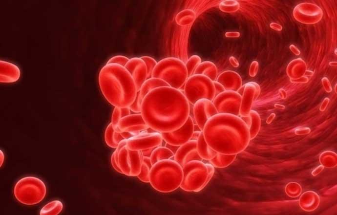 как разжижить кровь в домашних условиях