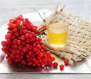 ягоды калины с медом рецепты