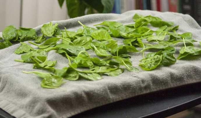 Как сушить и хранить лекарственные травы