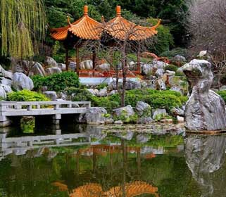 сад как в Китае