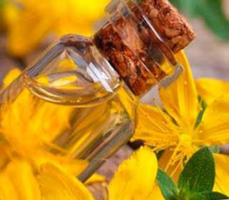 зверобойное масло полезные свойства и противопоказания