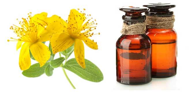 масло зверобоя свойства и применение