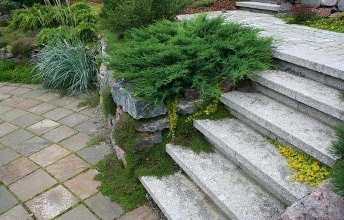 проект лестниц на участке